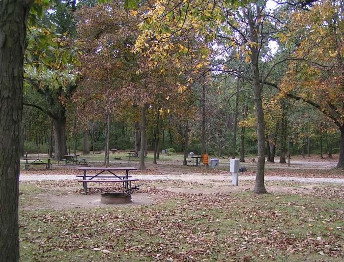 area-virginia-grove-camping